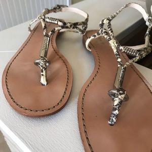 Coach Python Flat Sandal